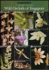 A Guide to the Wild Orchids of Singapore
